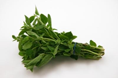 5 plantes pour maigrir