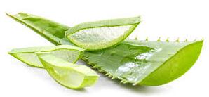 Beauty-Nectar-Aloe-Vera